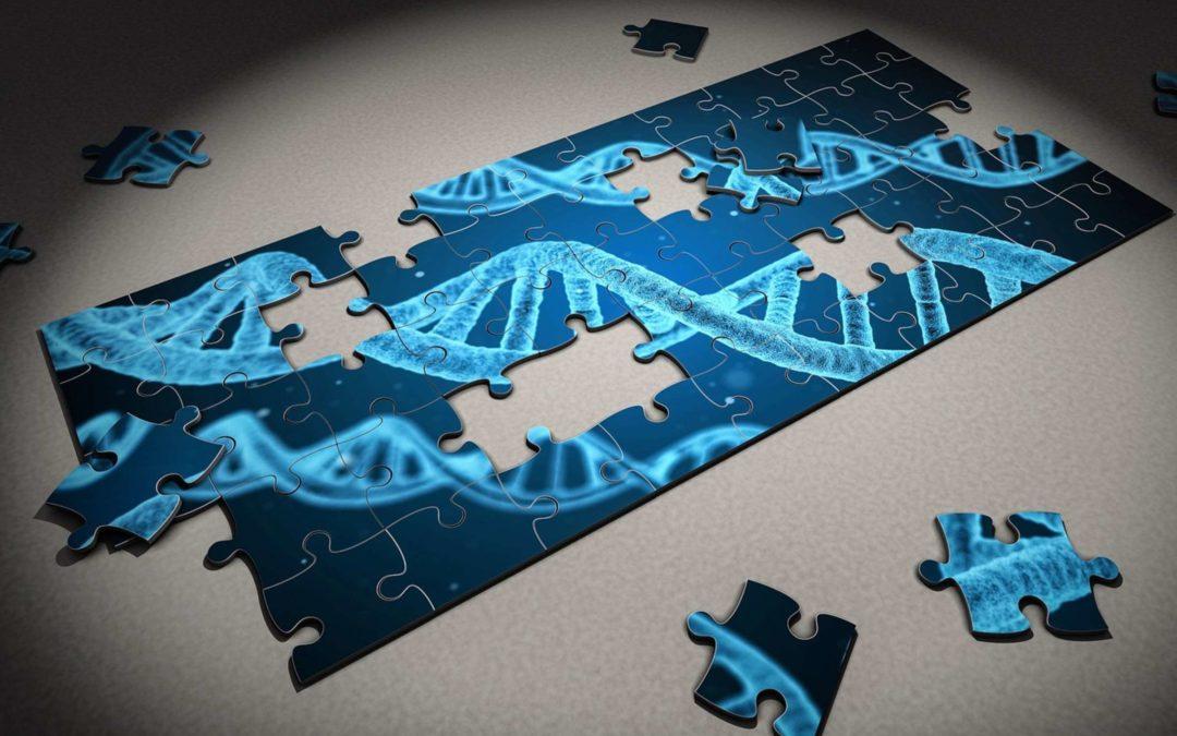 Investiga genomes amb Genigma