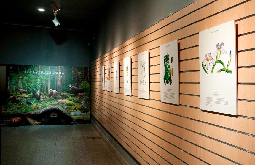 Exposició Il·lustraciència 7