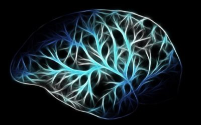Bloc Microxerrades científiques virtuals