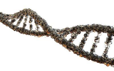 Assessorament genètic: donant a conèixer una professió