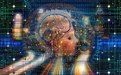 Microxerrades: Cervell i Intel·ligència
