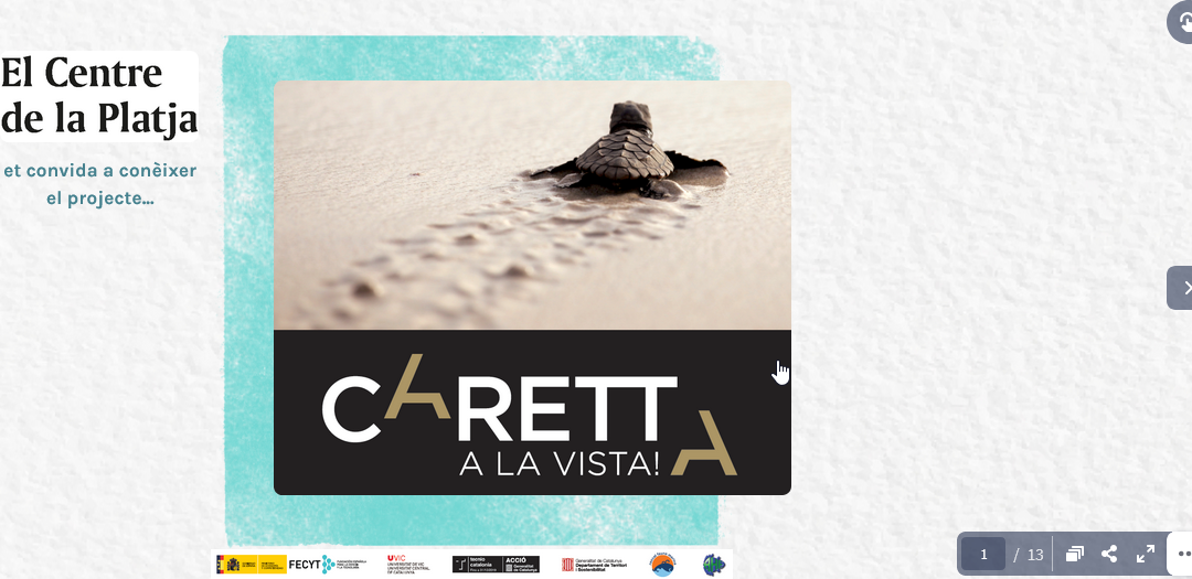 Caretta a la vista