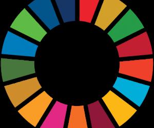 Passat i present en la construcció de la salut i el benestar de les persones en l'Agenda 2030