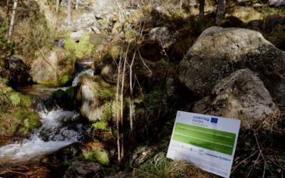 Estratègies per la reducció de la contaminació per plàstics i la millora de la qualitat ecològica i dels seveis mediambientals dels rius de muntanya