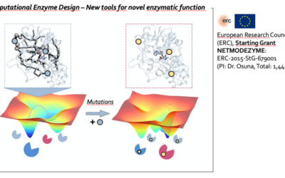 Network models for the computational design of proficient enzymes