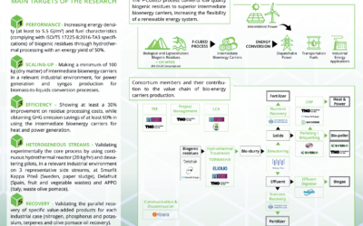 Future Feedstock Flexible Carbon Upgrading to Bio Energy Dispatchable carriers