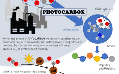 Carbon Dioxide as a Raw Material for the Production of Amino Acids