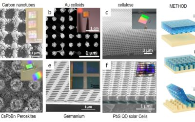 Photonic Electrodes for Enhanced Light Matter Interaction in Optoelectronic Devices