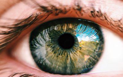 Investigar las bases moleculares de las enfermedades es el primer paso hacia la cura: el ejemplo del gen de retinosis pigmentaria CERKL