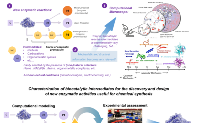 Computational characterization of enzymatic reactive intermediates for the discovery and design of new biocatalytic activities